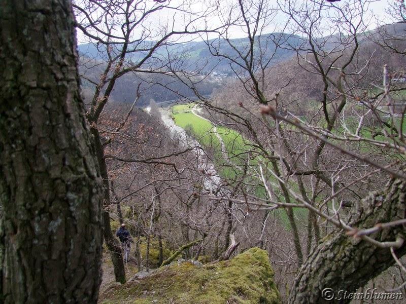 Ausblick Westerwald