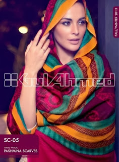Pashmina Scarves for Winter
