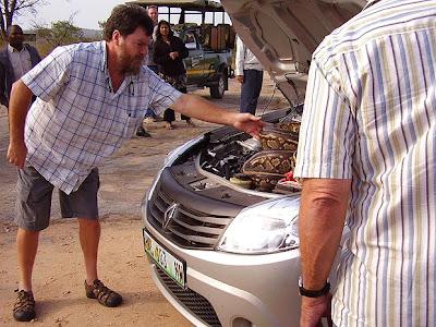 Casal dirige por quilômetros com cobra de quase cinco metros no motor do carro Snake-2_1579273a