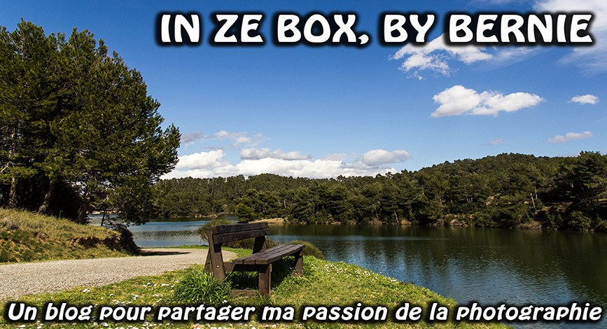 In Ze Box, By Bernie