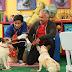 """Serie para preescolares """"Mutt & Stuff"""" de Nickelodeon, con Calvin y Cesar Millan"""