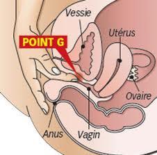 Female male op pre transsexual