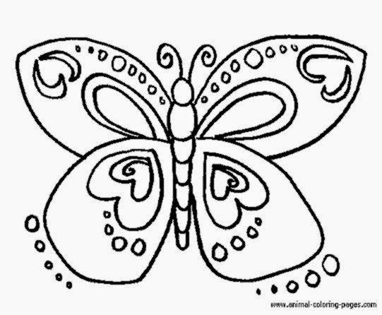 Butterfly Coloring Pages For Toddlers Sheets Free Sheet