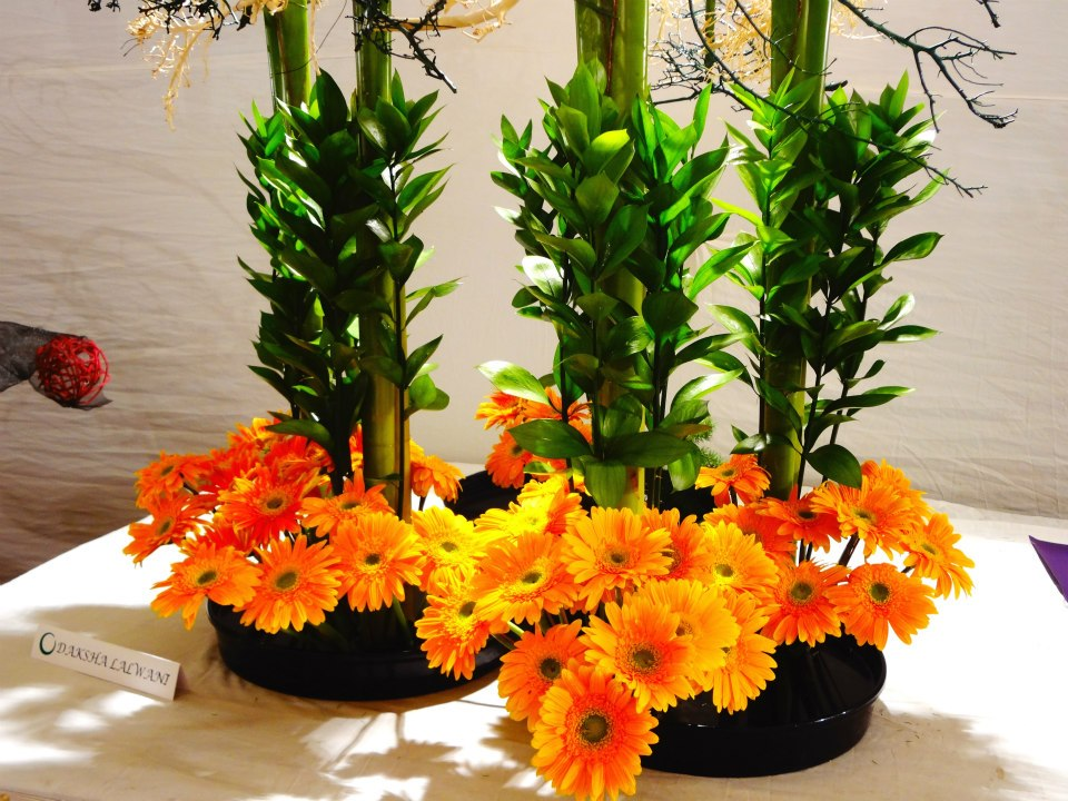 flower exhibition Floral vendors, floral suppliers, and companies offering variety of bouquets, cut-flowers, vases, containers, and other floral category product needs.