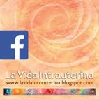 Facebooks de La Vida Intrauterina