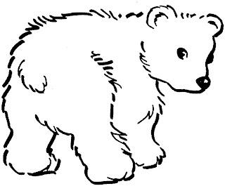imagens de animais selvagens para colorir