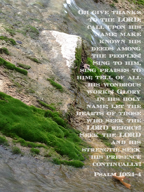 Oh give thanks to the LORD; call upon his name; make known his deeds among the peoples! Sing to him, sing praises to him; tell of all his wondrous works! Glory in his holy name; let the hearts of those who seek the LORD rejoice! Seek the LORD and his strength; seek his presence continually! Psalm 105:1-4