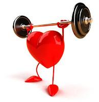 Descubren potencial estado cardioprotector en el corazon