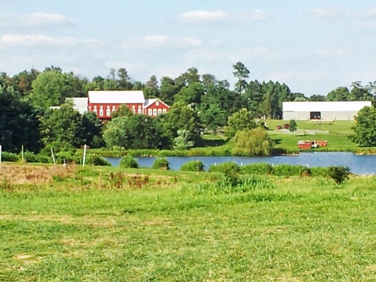 photo of Larriland farm