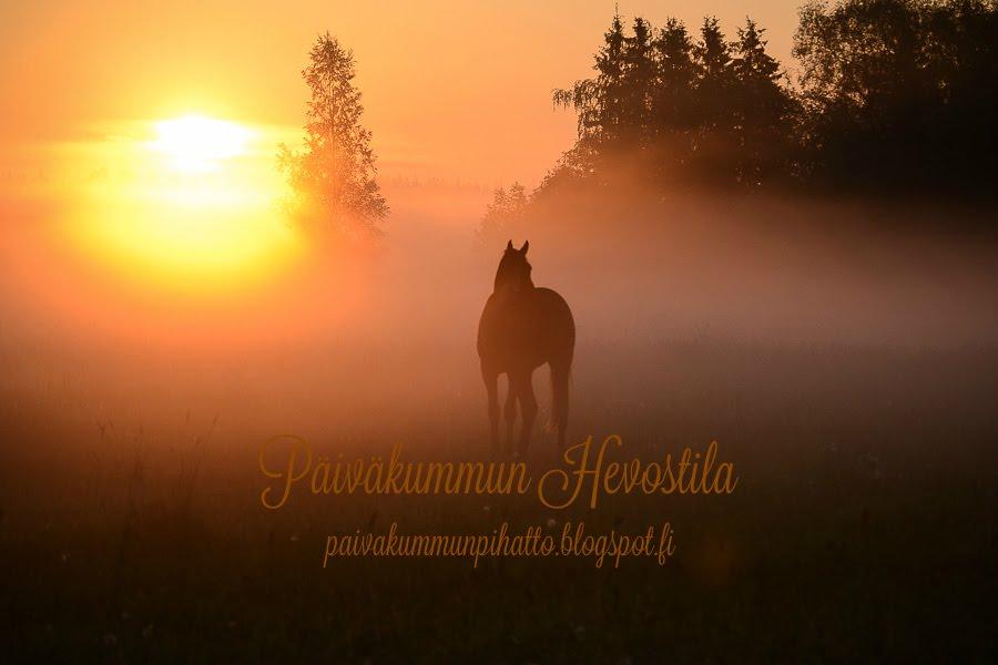 Päiväkummun Hevostila