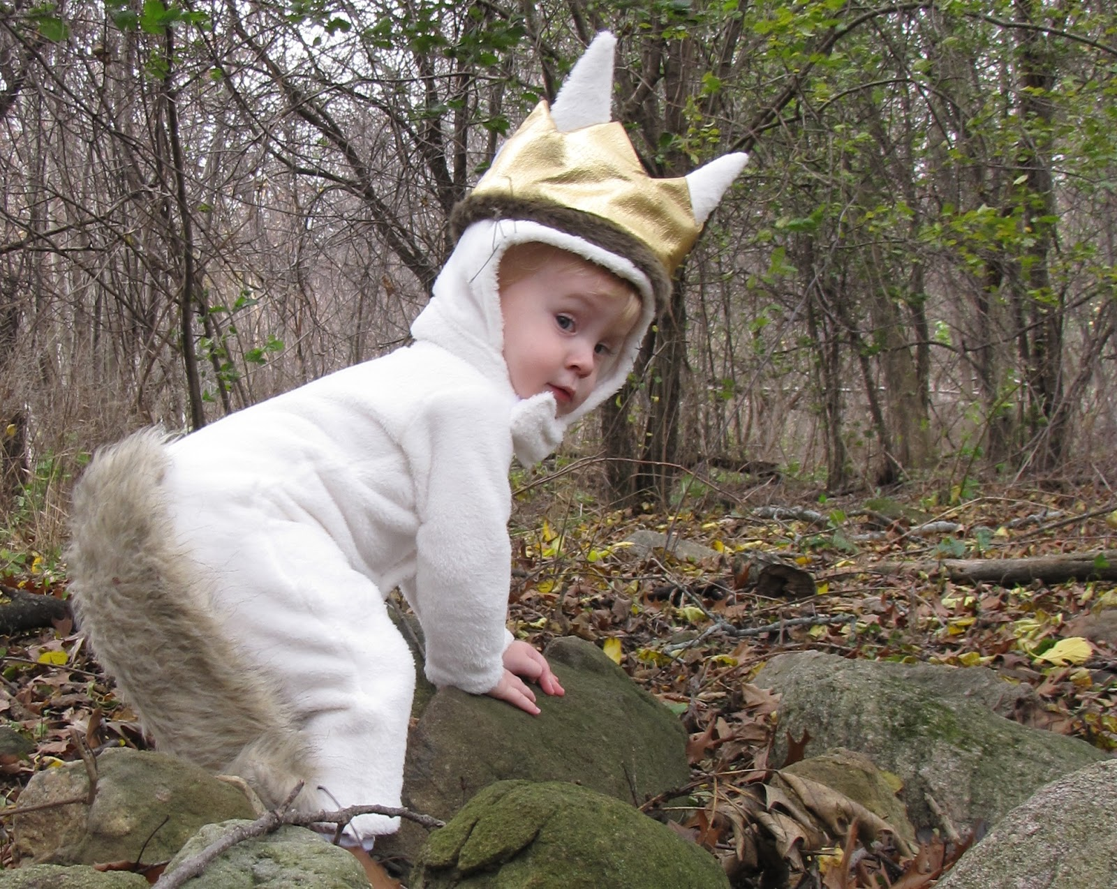 homemade max costume from where the wild things are - Max Halloween Costume Where The Wild Things Are