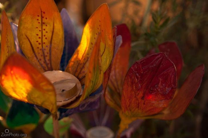 Flores deJardim para velas