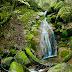 A la vall de Bianya: Gorgs de Santa Llúcia (III) i riera de Torrents (IV)