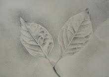 Whisper leaves p