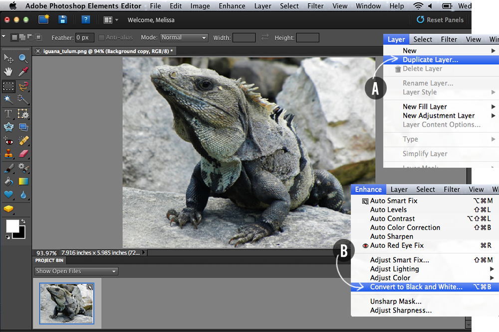 how to sharpen images in Photoshop Elements