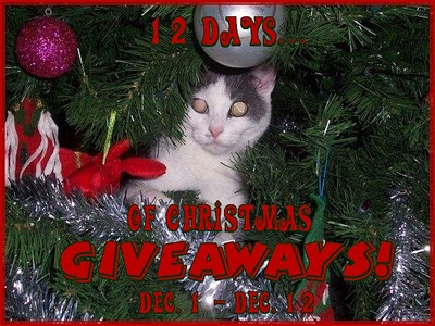 1 Free Blogger Opportunity ~ 12 Days of Christmas Giveaways