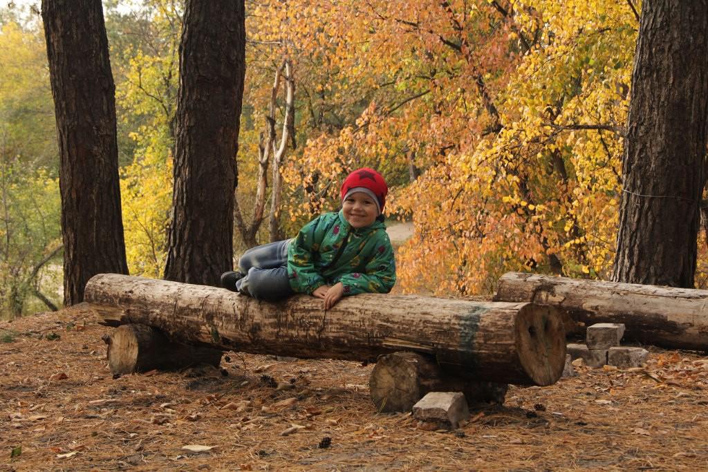 осенний пикник, прогулка, лес, отдых, шашлыки