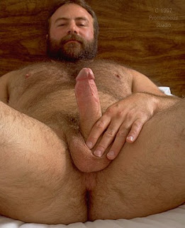 Osos Hombres Gordos Y Velludos