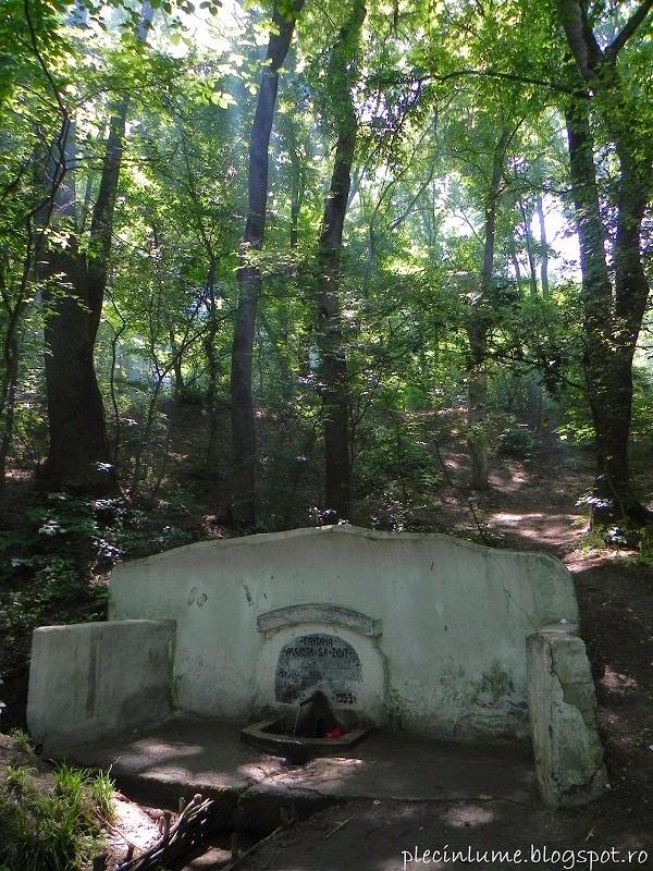 Fantana cu Nuc din Parcul Comana