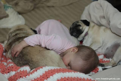 funny_picture_baby_sleeping.jpg