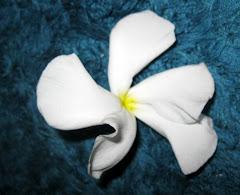चंपा के फूल व अन्य कविताएं