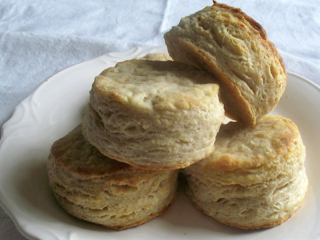 goat cheese biscuits