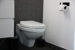 Seinä-wc soft close kannella on loistava ratkaisu wc.pöntöksi.