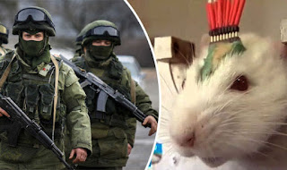 Ο Βλαντιμίρ Πούτιν εξαπολύει χιλιάδες ποντίκια για την καταπολέμηση του ISIS