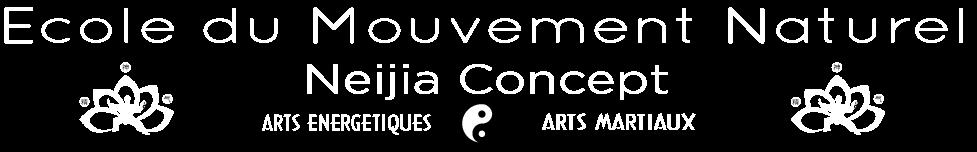 Qi Gong • Tai Chi Chuan • Bagua Zhang • Boxe Chinoise • Self Défense • à La Rochelle et alentours