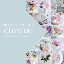 BEYOND THE LENS PHOTOSHOP ACTIONS