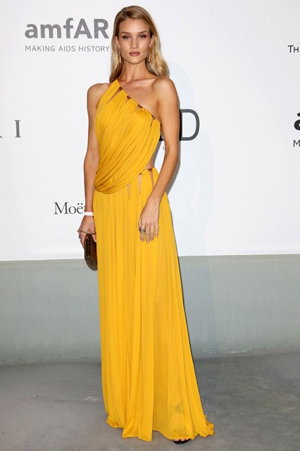 Rosie Huntington-Whiteley in an Emilio Pucci gown with Bulgari jewels and a Jimmy Choo clutch at Cannes, AmfAR Gala 2014
