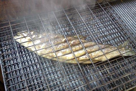 Pesca alla trota spinning e mosca trota alla griglia for Cucinare trota