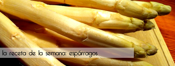 Recetas de cocina: Espárragos | Plaza Etxeberri Jatetxea