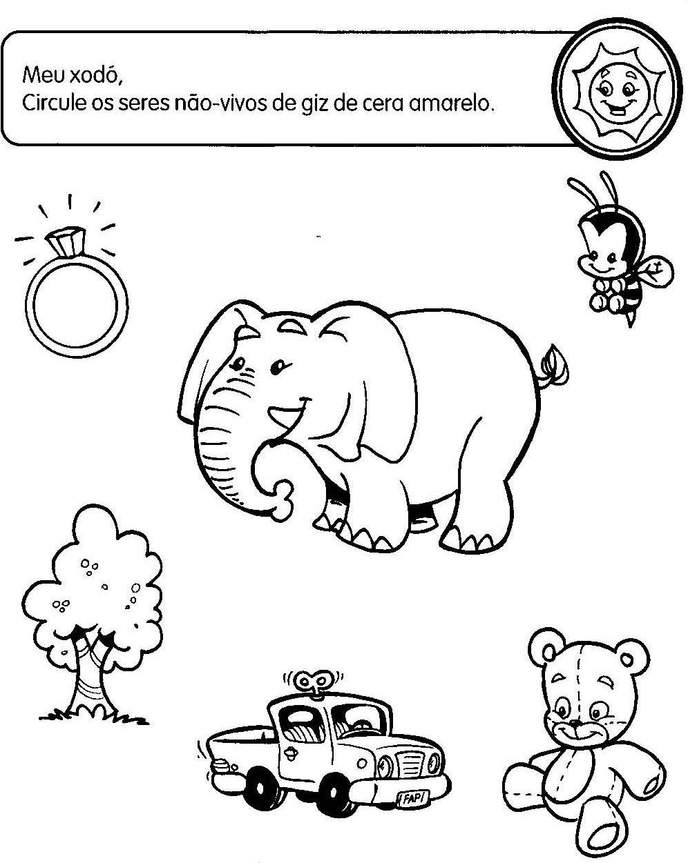 SERES VIVOS E NÃO VIVOS ATIVIDADES EXERCÍCIOS DESENHOS COLORIR ...