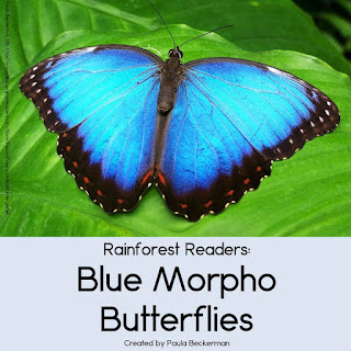 https://www.teacherspayteachers.com/Product/Rain-Forest-Readers-Blue-Morpho-Butterfly-1781029