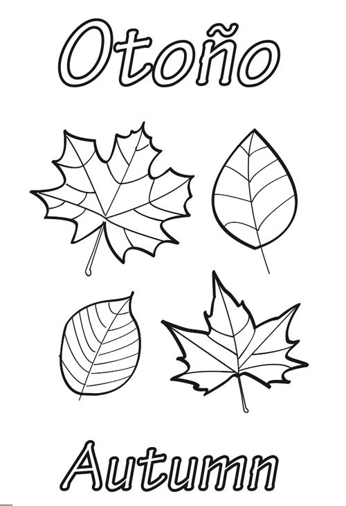 Dibujos para Colorear: Hojas de otoño para colorear
