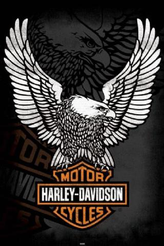 Betst Harley Davidson Logo Wallpaper for Android