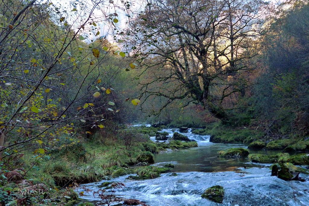 Desfiladero del Río Casaño