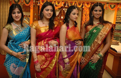 colourful silk saree