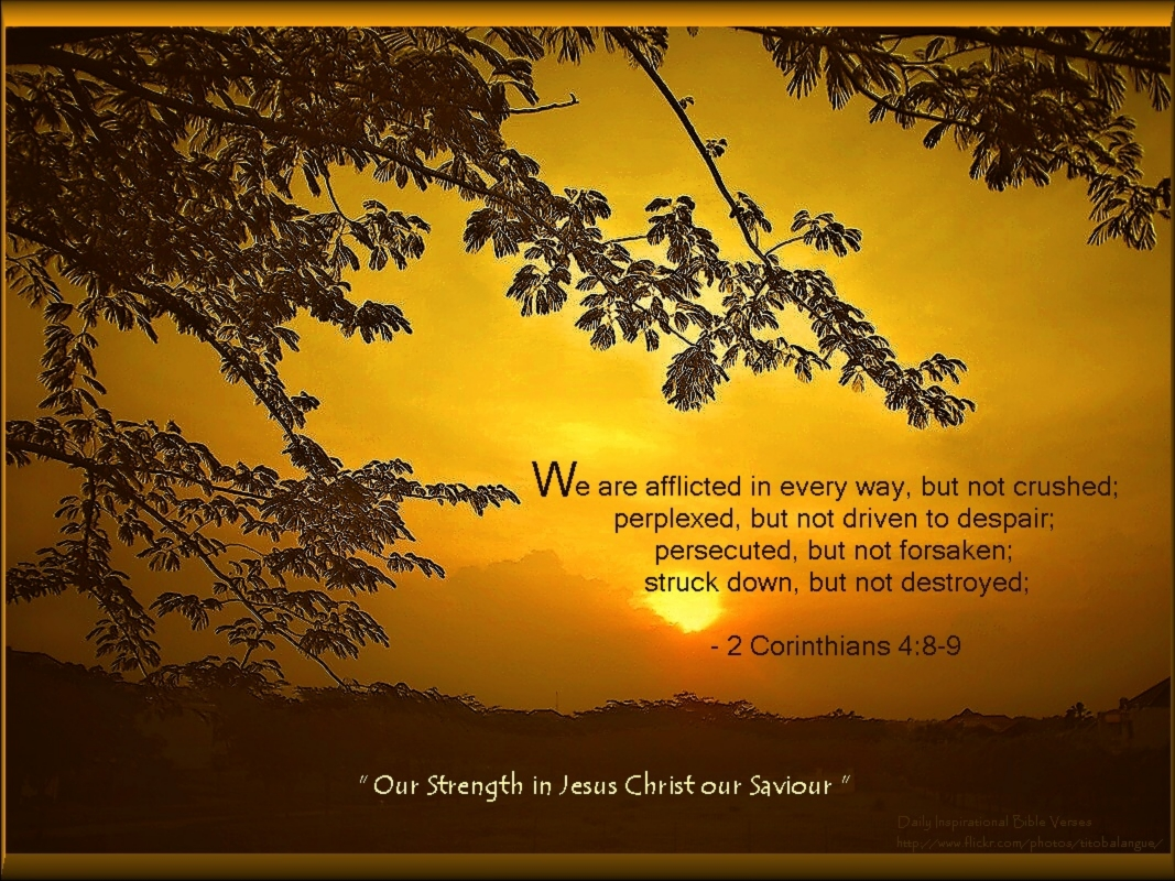 Christmas Cards 2012: Inspirational Bible Verse Wallpapers