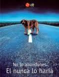 No abandones