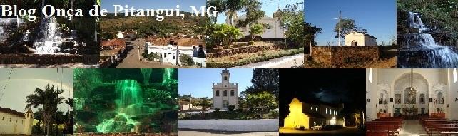 Blog Onça de Pitangui - Minas Gerais