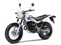2014 Yamaha TW200 pictures 3