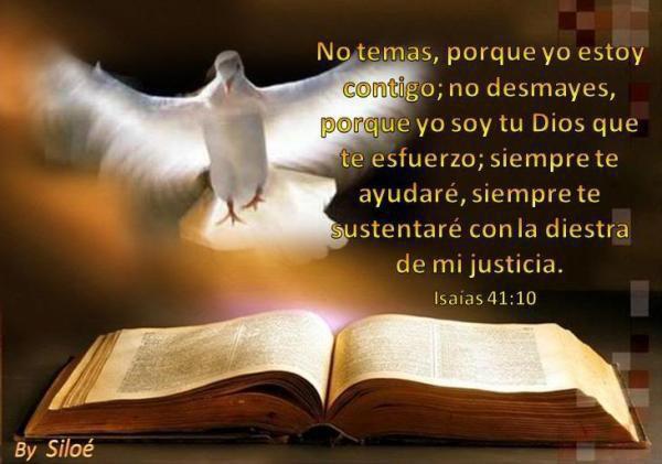 Salmos De La Biblia Cristiana