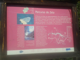 Percurso do Zela