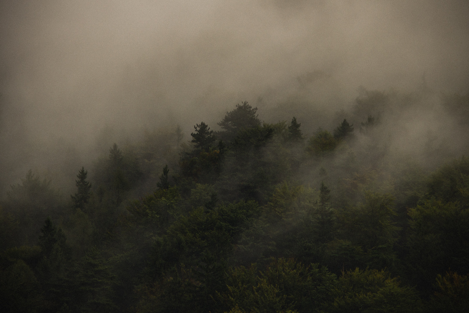 """Hollental, Austria. Górska fotografia krajobrazowa. Konkurs fotografii górskiej """"Lawiny"""". fot. Łukasz Cyrus"""
