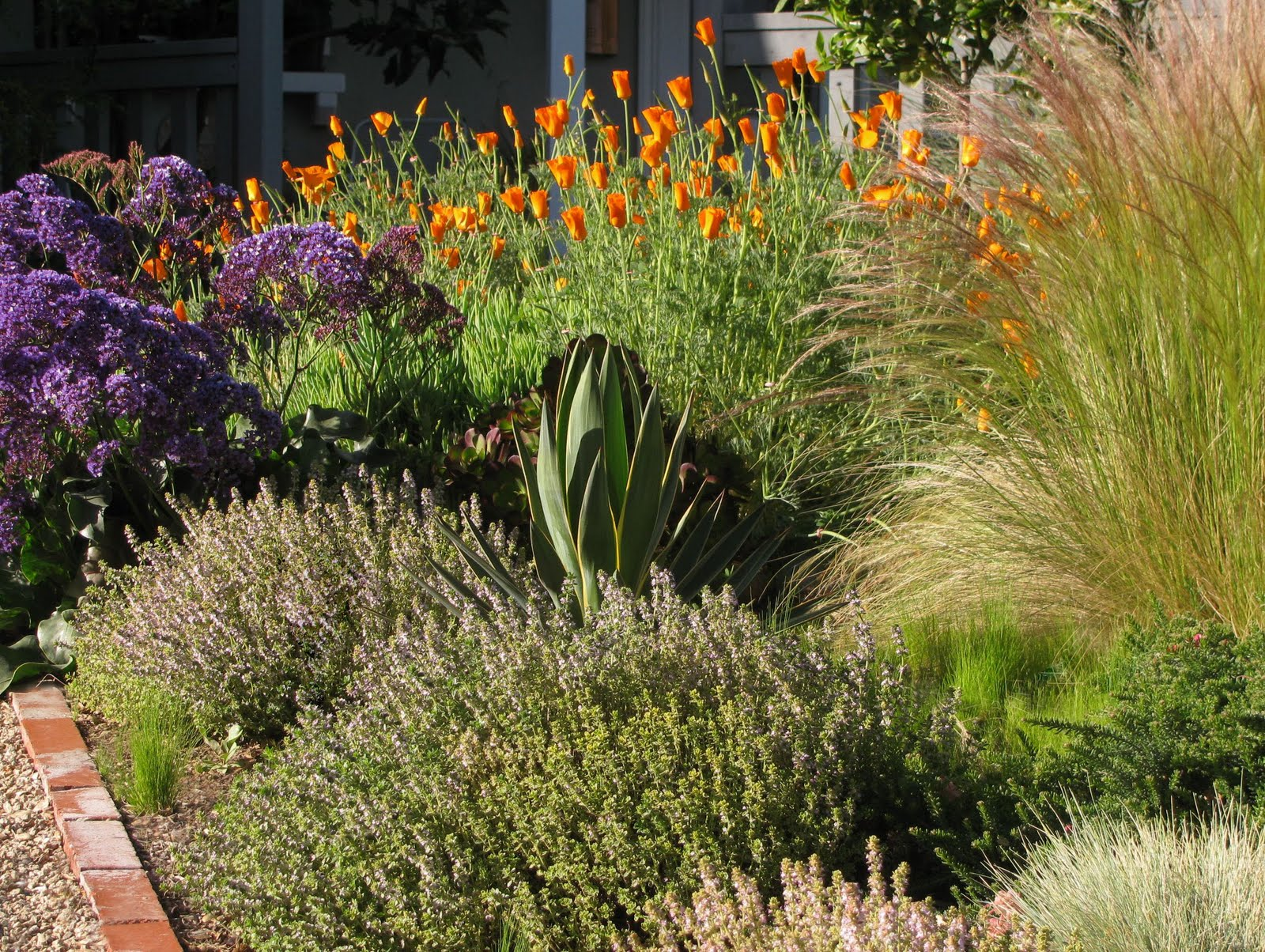 InterLeafings: Garden Designers Roundtable: Lawn Alternatives