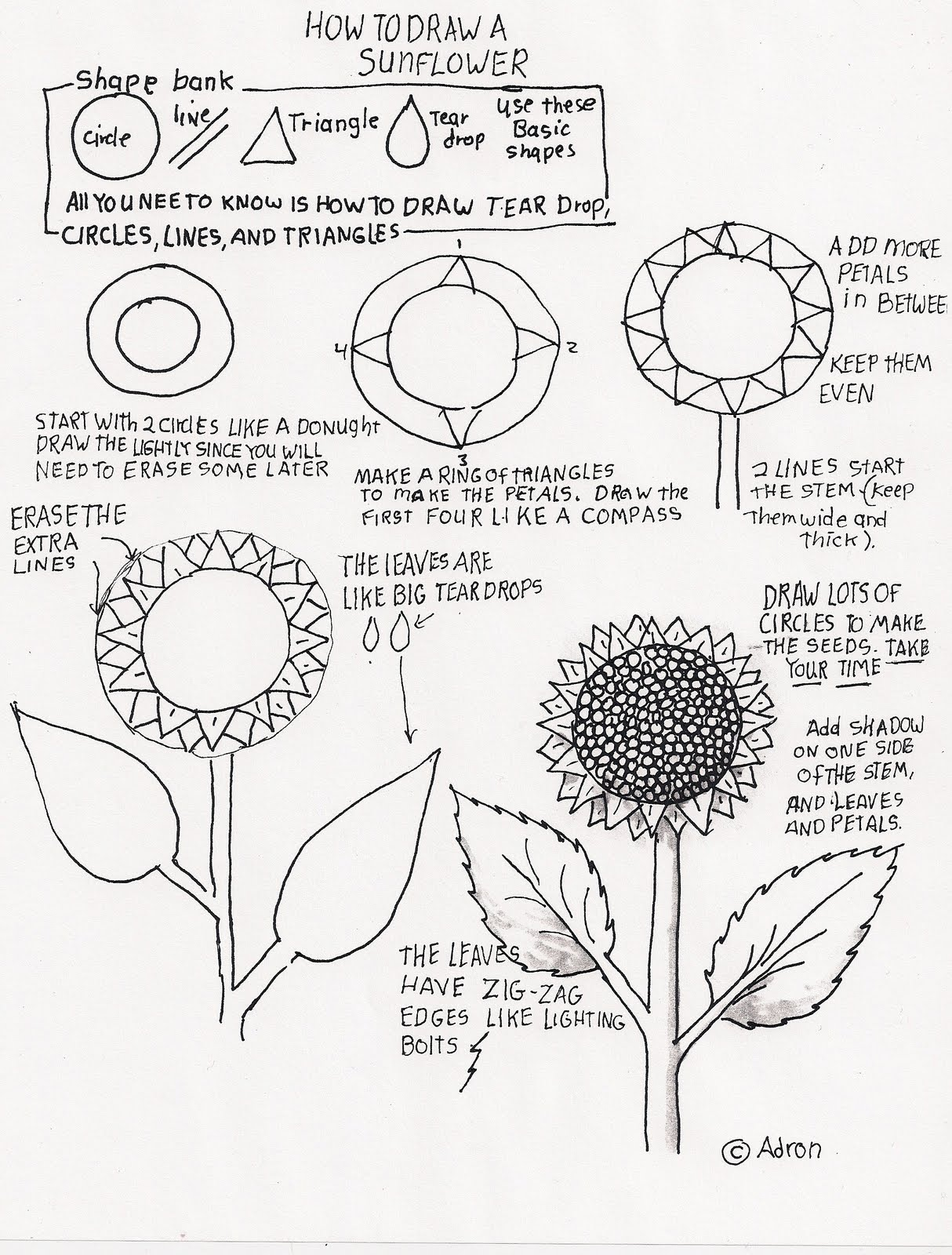 How to Draw Worksheets for The Young Artist: How to Draw A ...