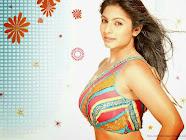 Tanisha Mukherjee HD Wallpaper