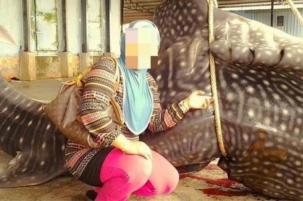 Gambar Wanita Malaysia Dengan Ikan Paus